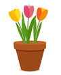Spring Tulip Flowers in Flower Pot Vector Illustration - 201273273