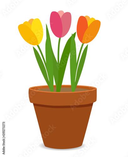 Spring Tulip Flowers in Flower Pot Vector Illustration - 201273273
