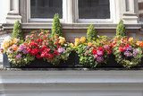 Window decorated with flowers, decorative greenery, typical view of the London street, London, United Kingdom.