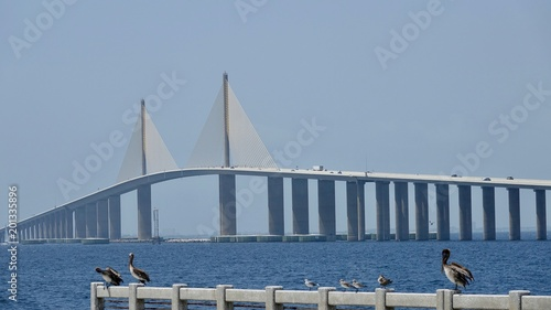 Foto Murales Sunshine Skyway Brücke in Florida