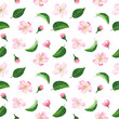 Pattern with flowers and leaves with watercolor. Seamless texture with pink flowers for invitations, wallpapers, greeting cards. - 201348020