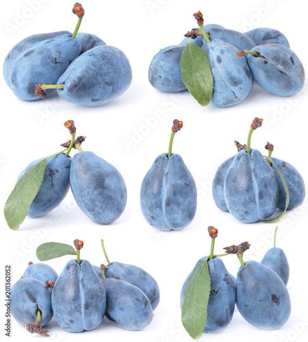 Foto Murales Plum fruit