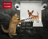 The cat holds a clapperboard. The dog is preparing to shoot in the film studio. - 201362805