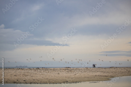 Flock on birds in mid flight with a couple walking on Paarden Eiland Beach at sunrise.