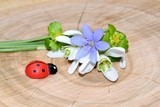 Romantic decoration with first spring flowers and wooden ladybug - 201391650