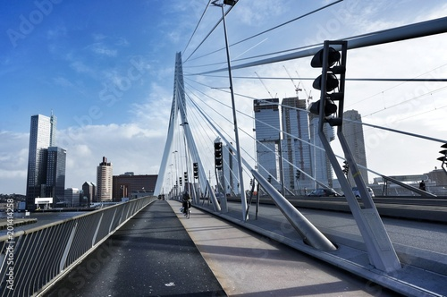 Foto Murales View from the middle of the Eurasmus Bridge in Rotterdam