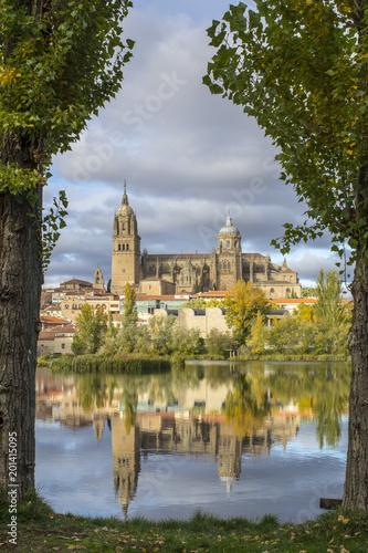 Vista desde el rio de las Catedrales de Salamanca  - 201415095