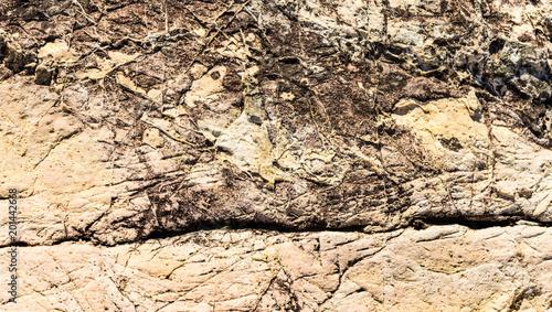 Staande foto Stenen Textura de rocha