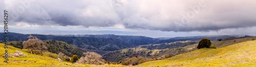 Nature Panorama - 201456297