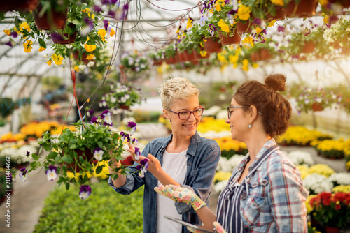 Foto Murales Charming joyful beautiful woman choosing flowers with professional modern florist seller in the large greenhouse.