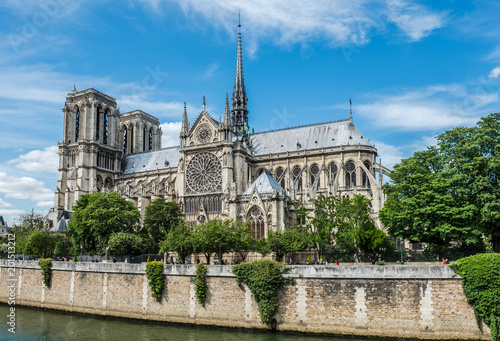 Cathedral of Notre Dame in Paris and the Seine river Poster