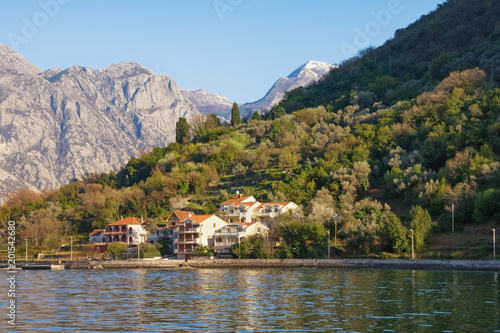 Foto Murales Mediterranean landscape with contrast of snow-covered and green mountains. Montenegro,  Bay of Kotor ( Adriatic Sea )