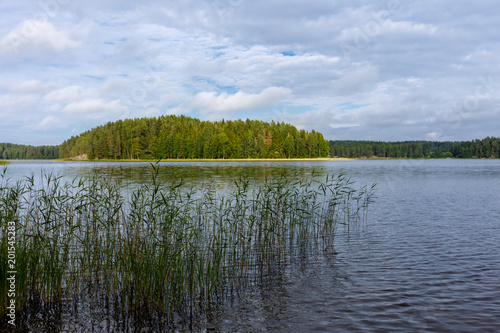 Foto Murales Summer landscape on the like with forest, Finland