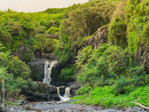 Foto Murales Maui Waterfall