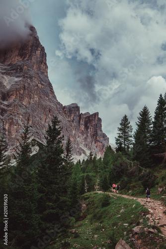 Dolomites northern Italy - 201591630