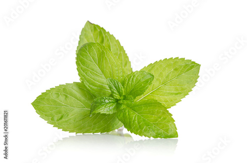 green leaves of fresh mint  isolated on white background - 201611821