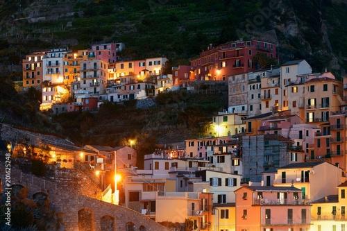 Manarola buildings in Cinque Terre night