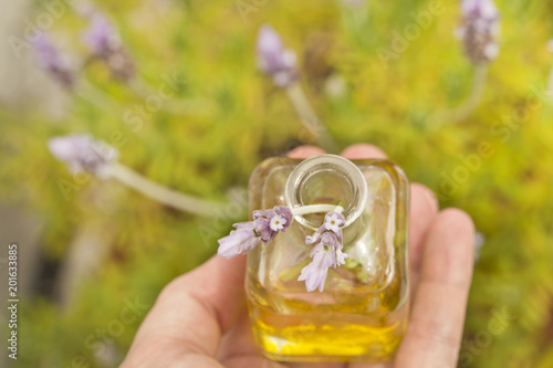 essential oil and lavender flowers - 201633885