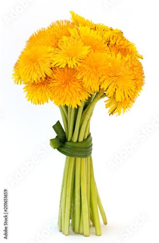 gelbe Löwenzahn Blumenstrauss mit weißem Hintergrund - 201651659