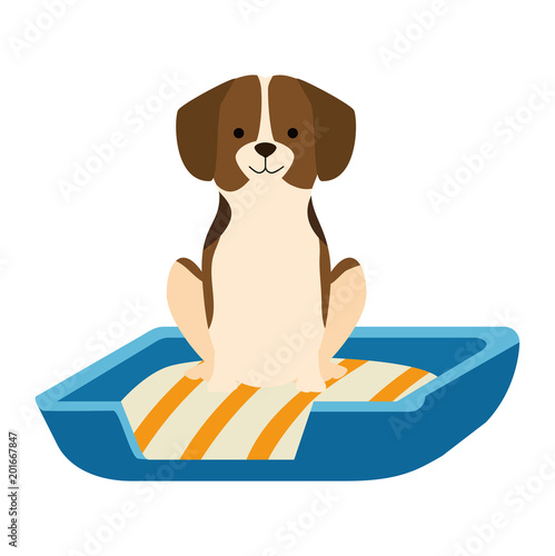 cute dog in the bed character vector illustration design