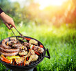 Picnic In Countryside - Barbecue Grill With Vegetable And Meat