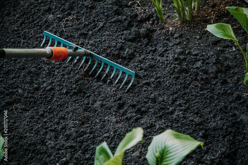Foto Murales Cultivation of land with garden tool