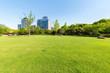 Leinwanddruck Bild - city park lawn