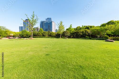 Leinwanddruck Bild city park lawn