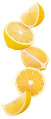 Slices lemon flying in the air © Olha