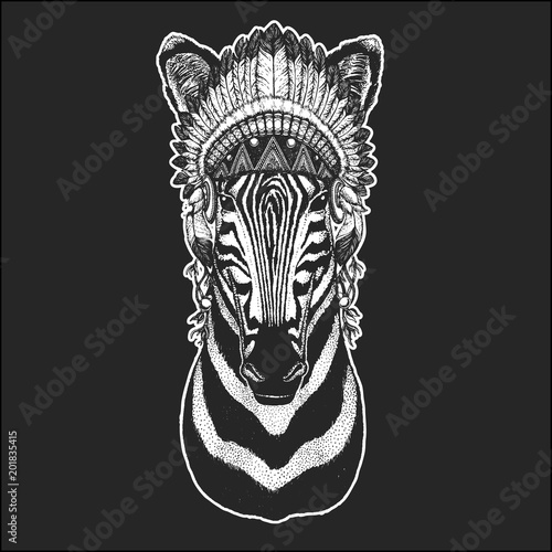 Zebra Horse Cool animal wearing native american indian headdress with feathers Boho chic style Hand drawn