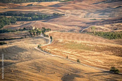 Plexiglas Toscane Beautiful typical countryside summer landscape in Tuscany, Italy