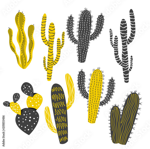 Mustard and Charcoal Cactus and Succulent Plants - 201855486