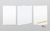 Pieces of torn white lined, blank note, notebook paper sheets for text stuck on squared background with pencil, eraser - 201884485