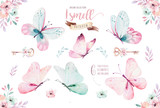 Watercolor colorful butterflies, isolated on white background. blue, yellow, pink and red butterfly illustration. - 201902213