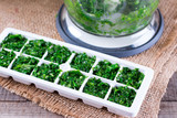 freezing greens in ice cube mould - 201908682