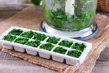 Frozen cubes of herbs - 201908695