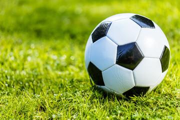 Fussball im Grass