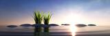 Steine mit Gras im Meer bei Sonnenuntergang - 201923896