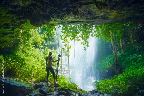 Foto Murales Crystal Falls - Dorrigo National Park, Australie