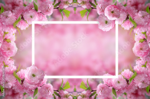 Canvas Candy roze Mysterious spring floral background and frame with blooming pink sakura flowers