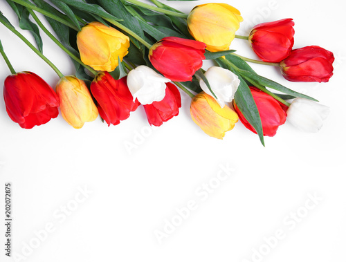 Tulips bouquet on white background empty space.