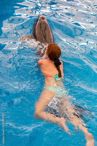 Foto Murales Young happy girl swimming with dolphin