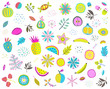 Set of colorful floral fruits nuts veggies and leaves. Vector illustration. - 202216657