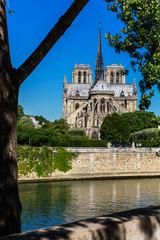 Notre Dame de Paris Cathedral on the Cite Island. Paris, France