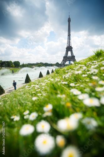 Tour Eiffel au printemps - Paris France