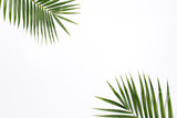 Tropical palm leaf branches on white background with empty space for text. Travel vacation concept. Summer background.  Flat lay, top view.