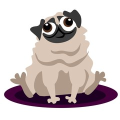 Funny cartoon pug dog illustration with white background