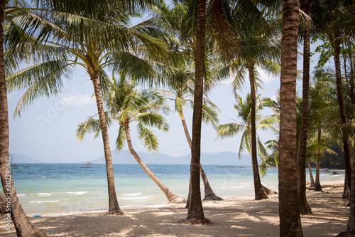 Aluminium Tropical strand Strand Phu Quoc