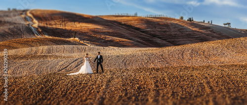 canvas print picture Young wedding couple on summer in tuscany