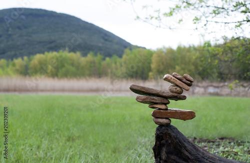 Plexiglas Olijf Wood Counter balance